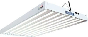 Agrobrite T5 grow light, FLT48, 4 Foot, 8-Tube Fixture with Included Fluorescent Grow Lights