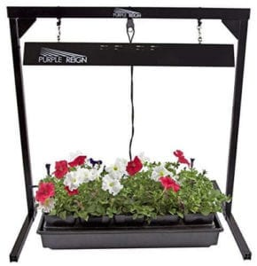 Apollo Horticulture Purple t5 grow light