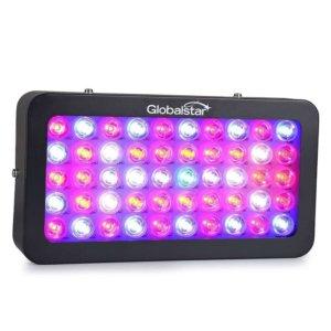 Global Star G02 300W led grow light