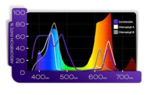 PAR spectrum of a full spectrum LED grow light - KIND LED