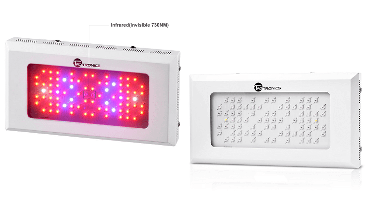 Taotronics 240W LED Grow Light Review - 420 Beginner