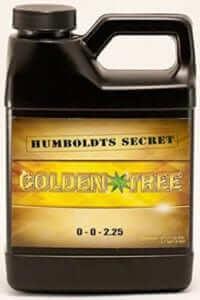 Humboldt's Secret Golden Tree