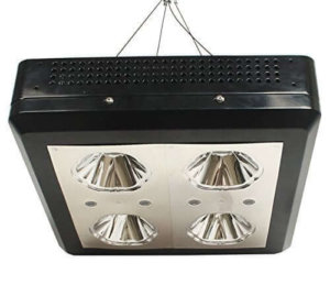 Zeus Lighting 250w led grow light