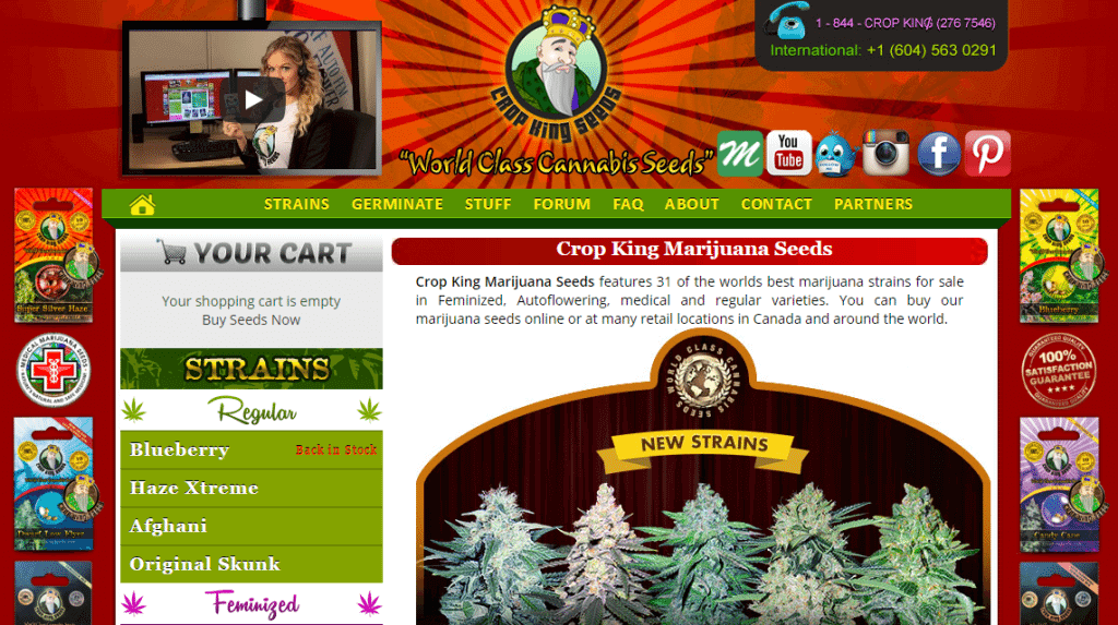Crop King cannabis seedbank