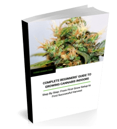 book graphic - Cover of complete beginner's guide to growing cannabis indoors