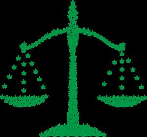 Marijuana Reform cannabis legalization