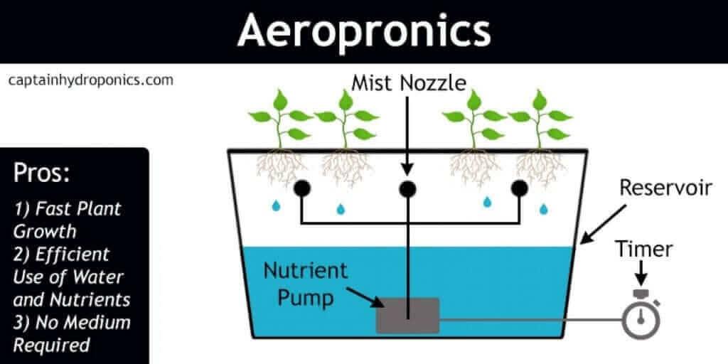 aeroponics system diagram
