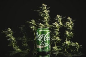 coca cola in weed patch