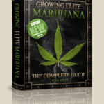ryan rileys growing elite marijuana the complete guide