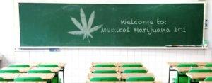 cannabis schools medical marijuana 101