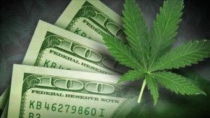 dollar weed