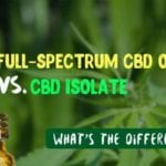 What is the Difference Between Isolate and Full Spectrum CBD Oil