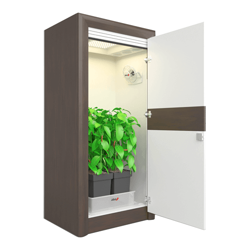 Groovy 10 Best Stealth Grow Boxes What Is Stealth Growing Interior Design Ideas Tzicisoteloinfo