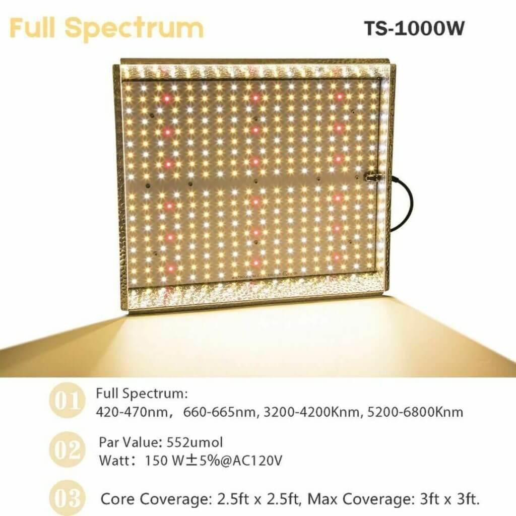 TS 1000 specs