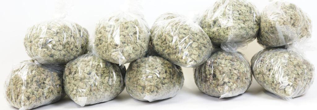 Essential Weed