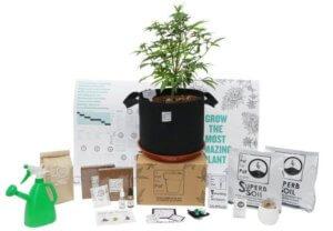a Pot For Pot kit