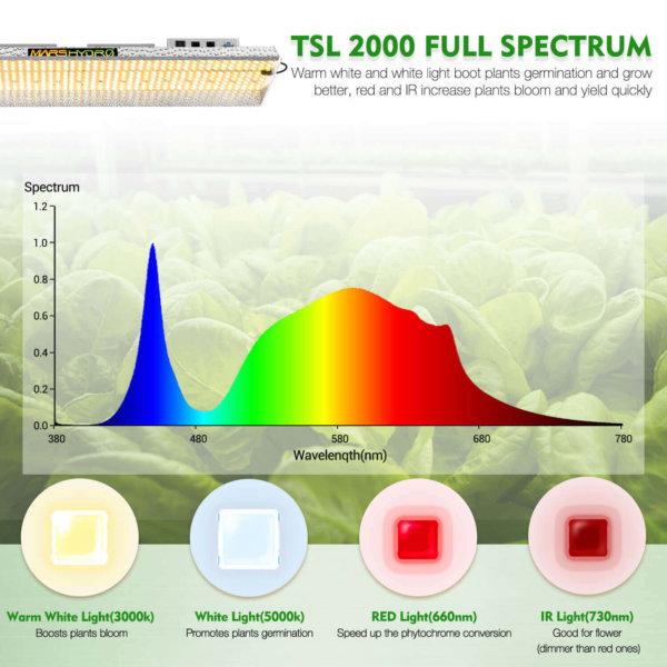 TSL 2000