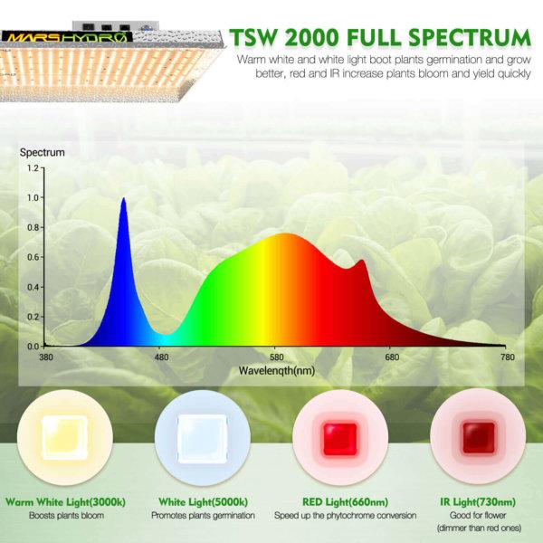 TSW 2000 LED
